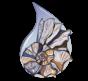 CORPUS OCEANUM DE VITA